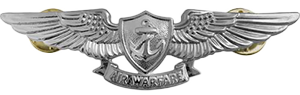 Enlisted Expeditionary Warfare Specialist Insignia