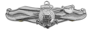 Navy Information Warfare Insignia